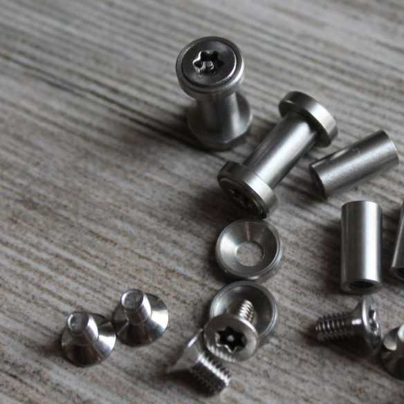 Torx Screws 17 x 6 mm