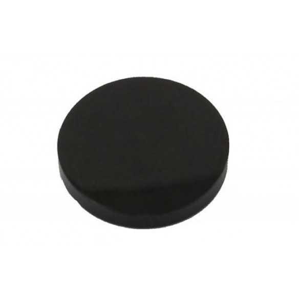 Buffalo coin